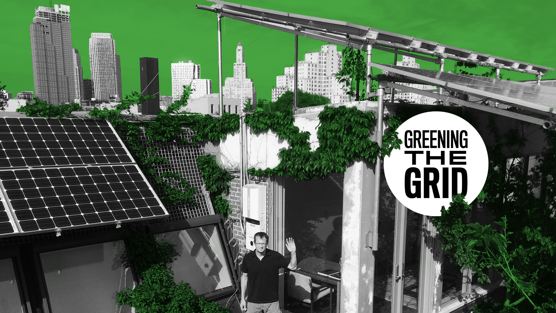 Greening the Grid: New York's Energy Future
