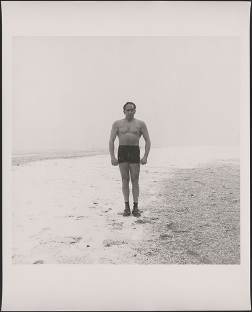 Stephen Salmieri. Polar Bear, Coney Island
