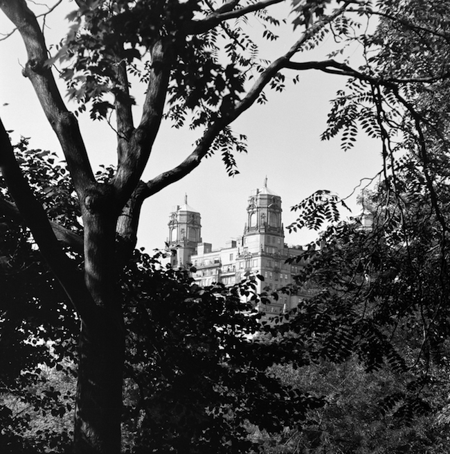 Black and white photo of the Towers of The Beresford seen from Central Park.