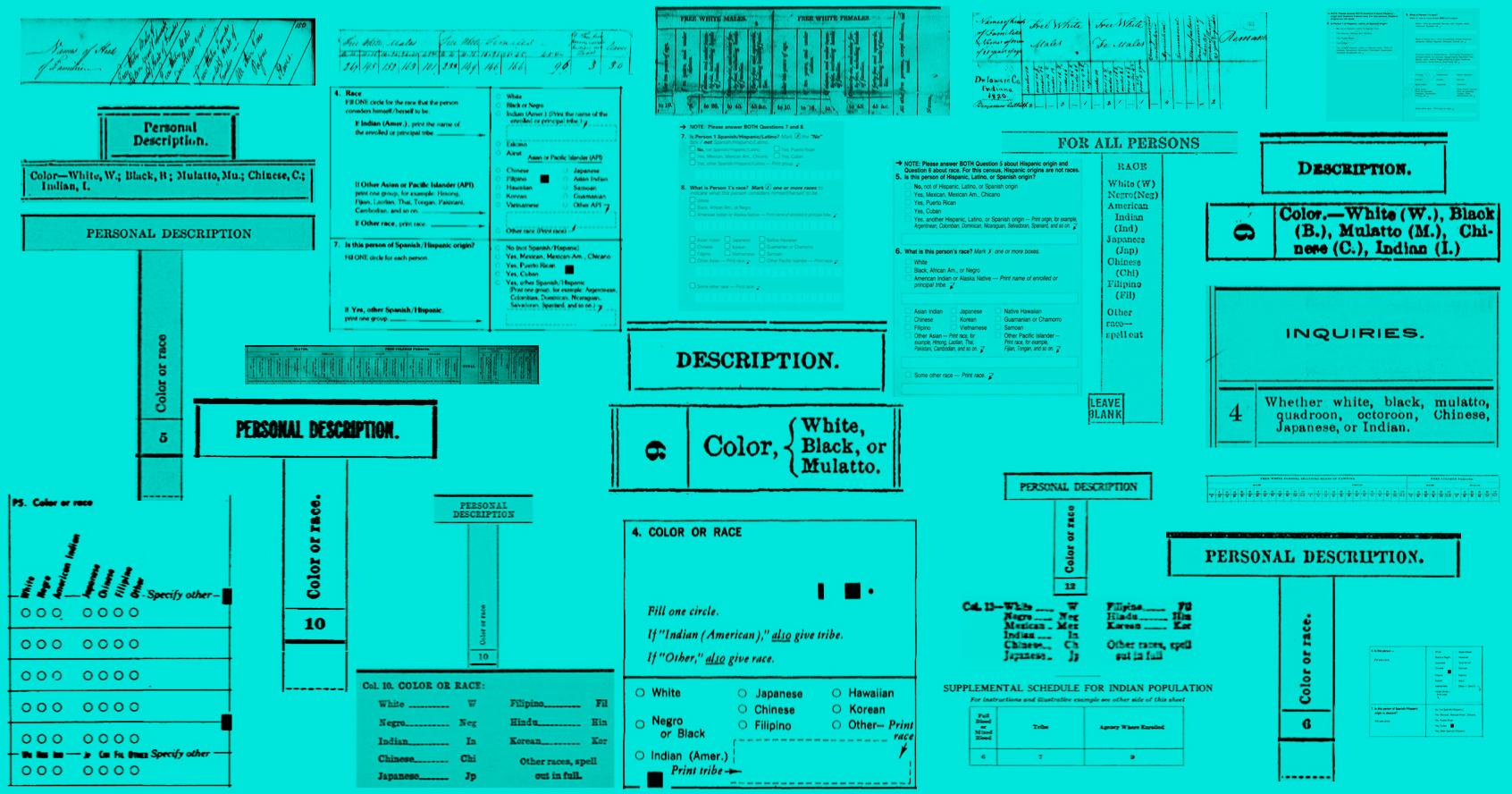 Census Collage
