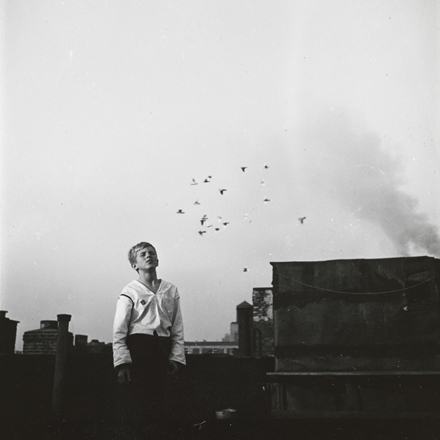 Stanley Kubrick. Shoe Shine Boy [Mickey at a rooftop pigeon coop.], 1947. Museum of the City of New York. X2011.4.10368.58