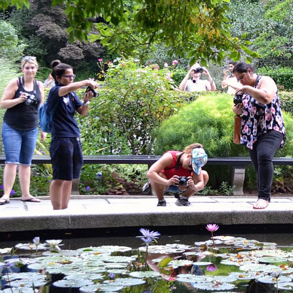 Educators taking photos during a field trip to Central Park.
