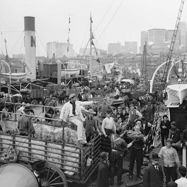香蕉码头的照片,c。 1906年