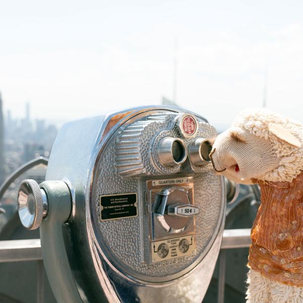 Lamb Chop at the Rockefeller Center observation deck