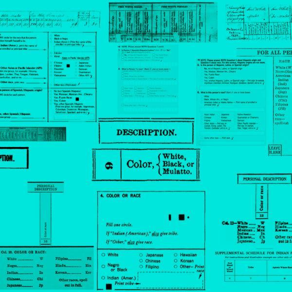 Colagem do Censo