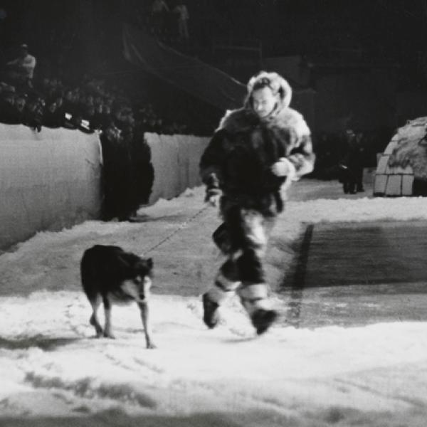 Uma foto do museu de Wurts Bros de [Mushing no North American Winter Sports Show], tirada em 1936.
