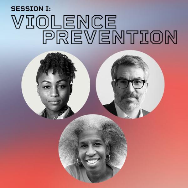 Tratamiento del título de prevención de la violencia