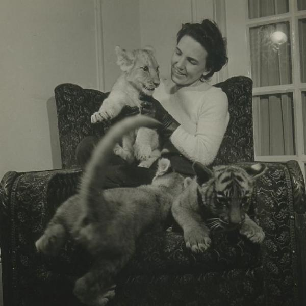 "A photo of Bob Sandberg's ""Zoo Pictures (Bronx)- Mrs. Fred Martini""."