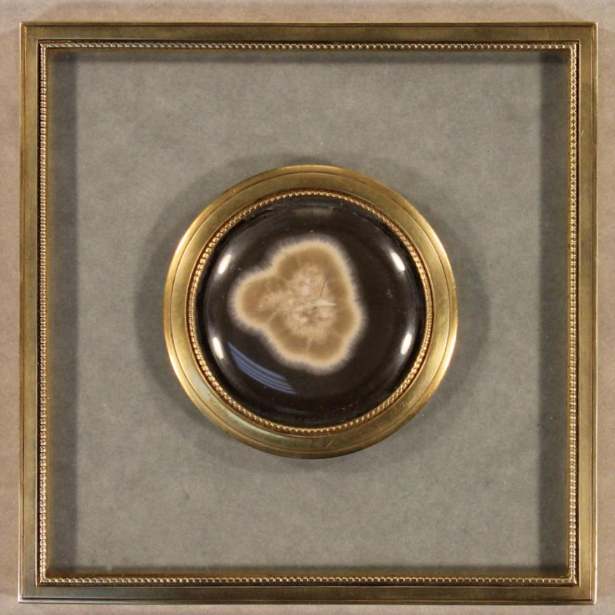 Brown medallion with gold around the edge, and a blown-up image of a microbe in the center
