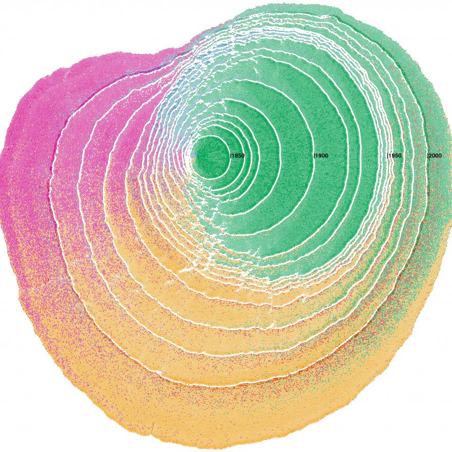 Immigration patterns to the United States visualized as tree rings.