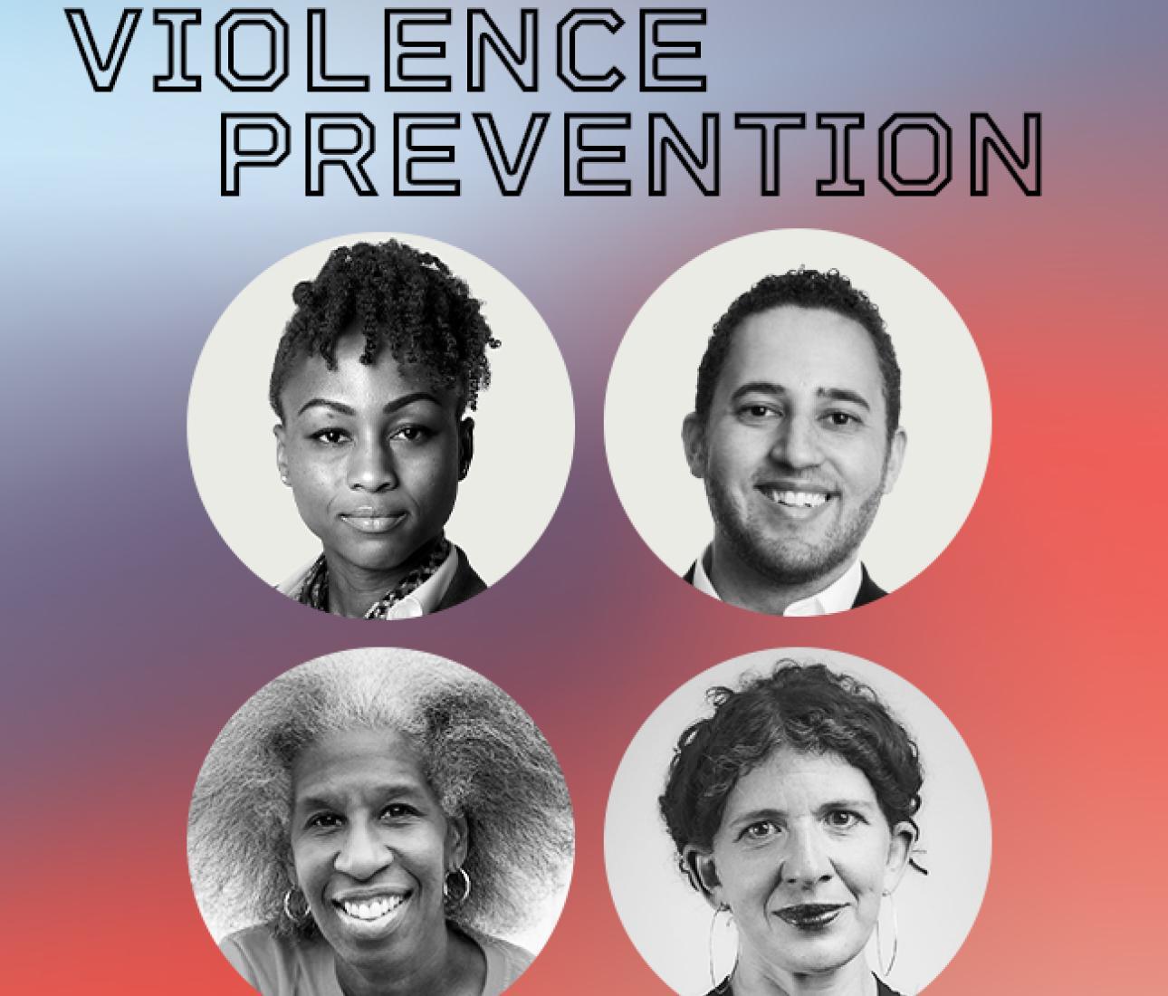 경찰의 대안 구상 : 폭력 예방