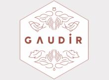 Logo Gaudir