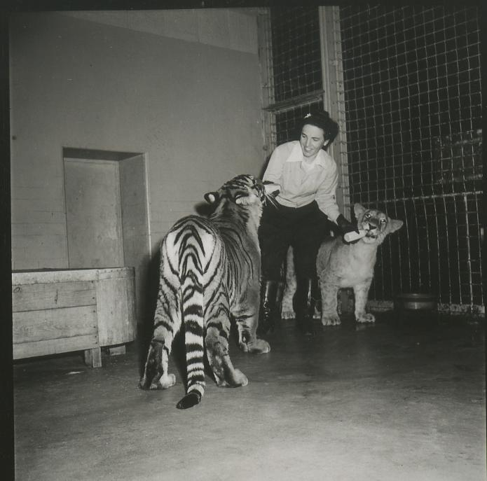 """Zoo Pictures (Bronx)—Mrs. Fred Martini."""